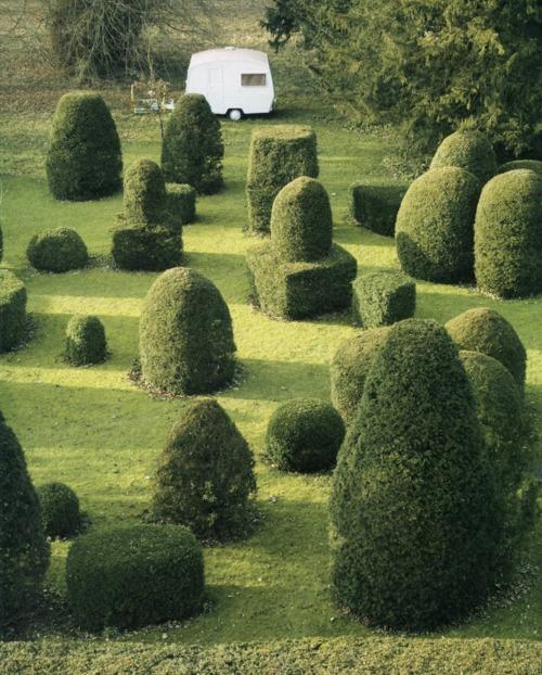 random_topiary