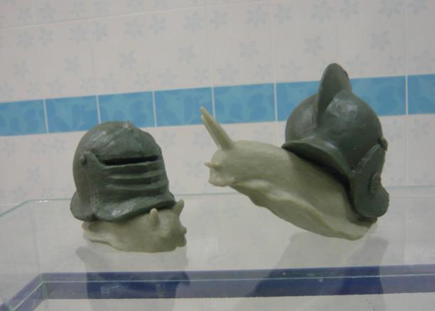 snails03